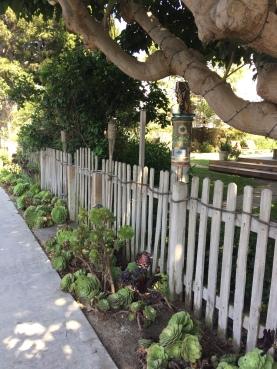 La végétation est magnifique, les jardins sont très biens entretenus.